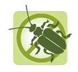 Ungeziefer- und Schädlingsbekämpfung
